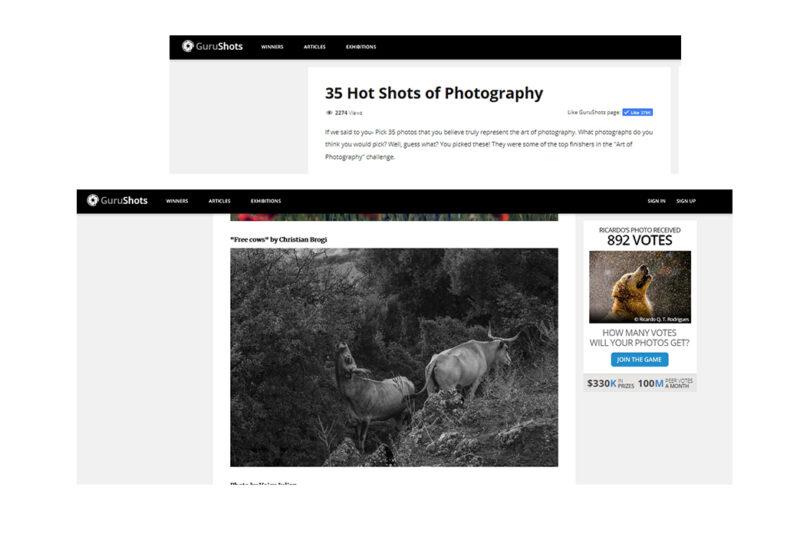 Top 35 image on GURUSHOTS