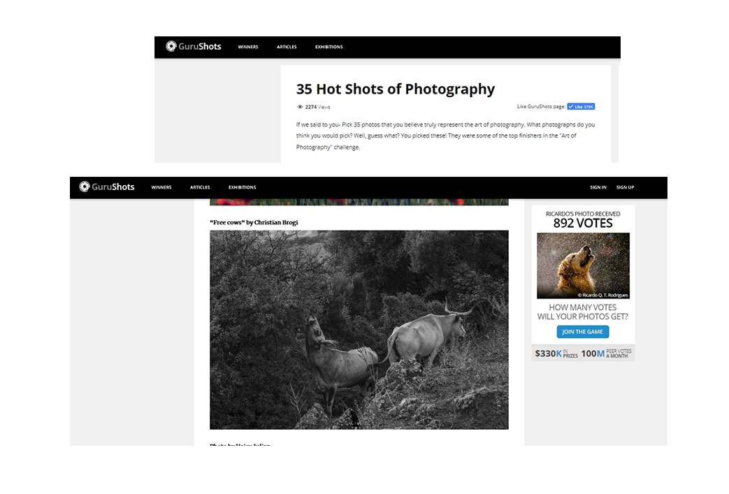 Top 35 image on GURUSHOTS